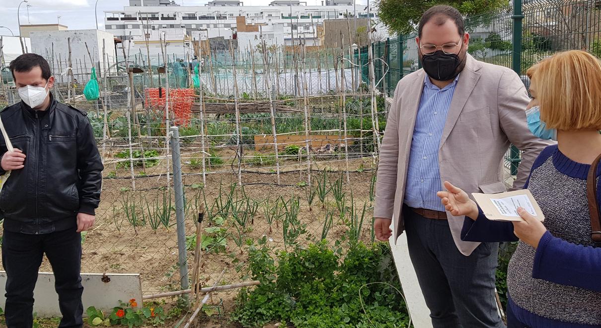 El Puerto se suma al proyecto Andalhuerto de la Junta con el reparto de semillas en los huertos urbanos del Centro Cívico