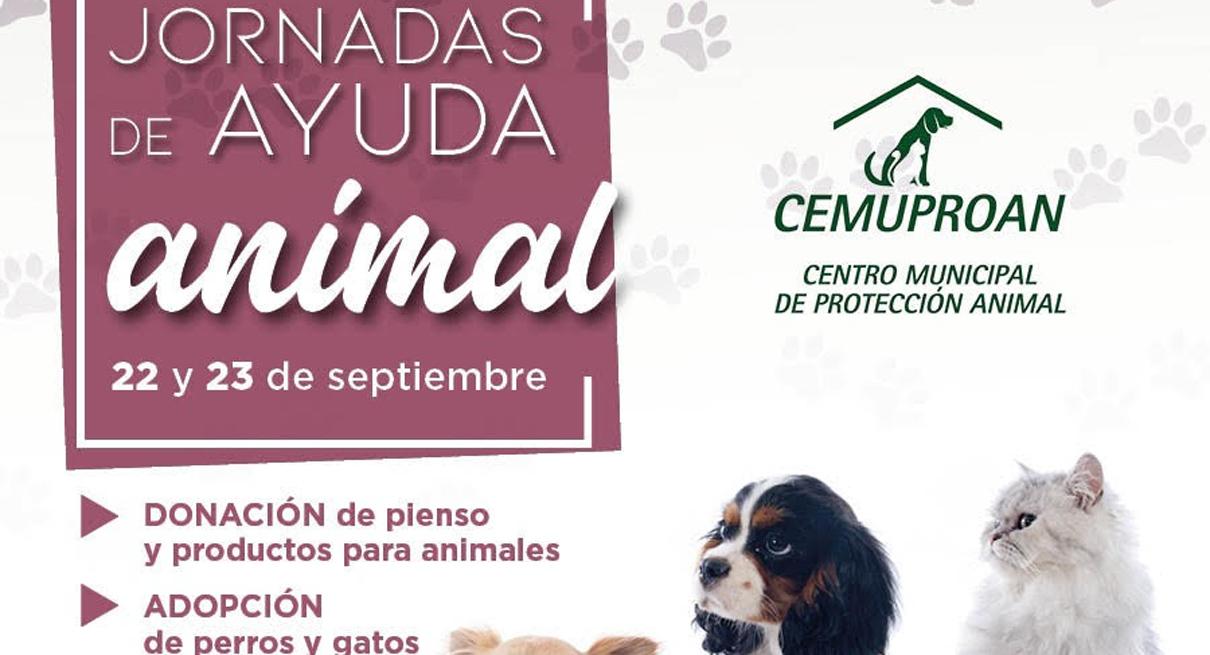 Jornadas de Ayuda Animal